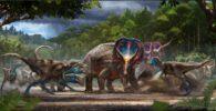 El caso frío del Cretácico de 'duelo' de T.rex y Triceratops finalmente puede ser resuelto