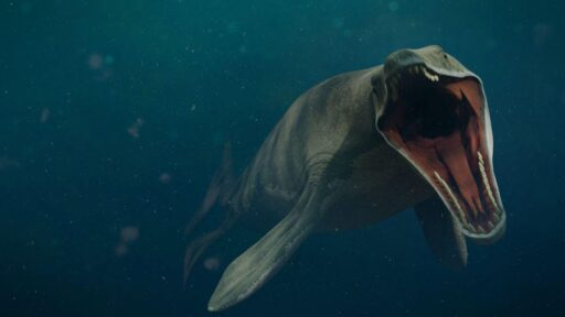 Mosasaurus: depredador oceánico ápice de la era de los dinosaurios