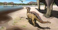 Pequeña huella de estegosaurio bebé descubierta en China