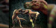 Los tiranosaurios se muerden la cara unos a otros en clubes de lucha de dinosaurios
